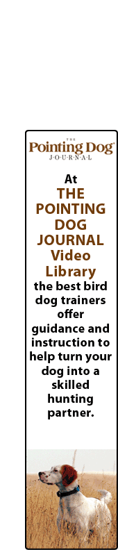 The Pointing Dog Journal Video Library has the best bird dog trainers offering guidance and instruction to help turn your dog into a skilled hunting partner.
